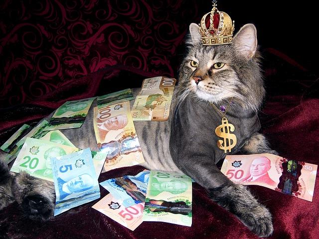 Rozumné hospodárenie s peniazmi